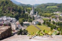 Sikt av staden Lourdes - murgröna på fästningväggen på bakgrund fristaden av vår dam av Lourde Royaltyfri Fotografi