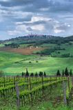 Sikt av staden av Pienza Tuscany, Italien fotografering för bildbyråer