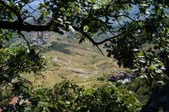 Sikt av staden, San Marino, träd Royaltyfri Fotografi