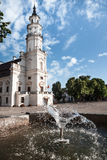 Sikt av stadshuset i gammal stad Kaunas Litauen Arkivbild