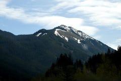 Sikt av staten Washington USA royaltyfri foto