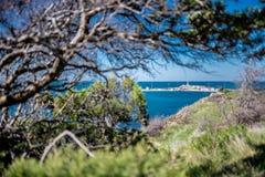 Sikt av stranden från träden arkivbilder