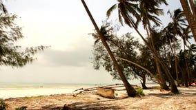 Sikt av stranden i Zanzibar Arkivfoton