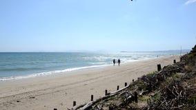 Sikt av stranden nära Piombino i sommar arkivfilmer
