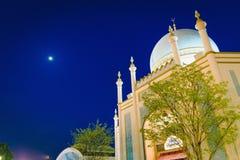 Sikt av Taj Mahal på det Everland nöjesfältet royaltyfria foton