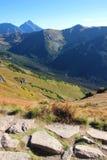 Sikt av Tatra berg Royaltyfri Bild