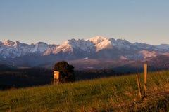 Sikt av Tatrasen från byn av Å-apszankaen royaltyfria foton