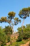 Sikt av templet från Poble Espanyol. Barcelona. Royaltyfri Foto
