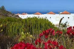 Sikt av Tenerife, kanariefågelöar, Spanien Arkivbilder