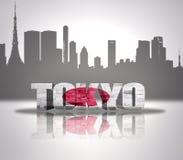 Sikt av Tokyo Royaltyfri Fotografi