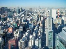 Sikt av Tokyo, Japan royaltyfria bilder