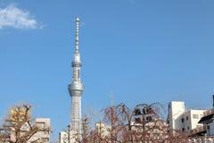 Sikt av Tokyo Skytree från den Sensoji templet, Tokyo, Japan arkivfoto
