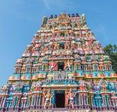 Sikt av tornet för hinduisk tempel på sarangapanitemplet, Tamilnadu, Indien - December 17, 2016 Royaltyfria Foton