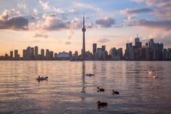 Sikt av Toronto Kanada Cityscape Royaltyfria Bilder