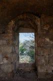 Sikt av träd till och med antik dörr på den gamla stenväggen Royaltyfria Bilder