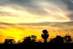 Sikt av trädkonturer och himmel med molnet royaltyfria foton
