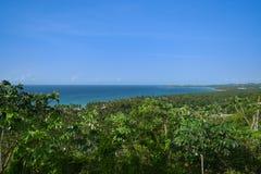 Sikt av trevlig tropisk bakgrund Royaltyfri Bild