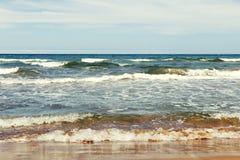 Sikt av vävar från havskust Arkivbilder