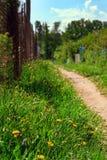 Sikt av vandringsledet, järningreppsstaketet och det gröna gräset med maskrosor på den soliga dagen, selektiv fokus royaltyfri foto