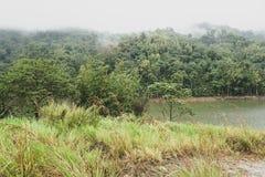 Sikt av vattenbehållaren för den hydroelektriska fördämningen som lokaliseras i Malaysia Frodig vegetation, molnigt dimmigt berg  royaltyfri foto