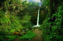 Sikt av vattenfallet och det grönaktiga skoglandskapet Arkivbilder