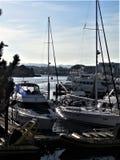 Sikt av Victoria Harbour arkivbild