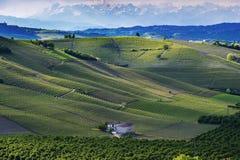 Sikt av vingårdarna och kullarna av Langa Piemonte Italien Royaltyfri Fotografi
