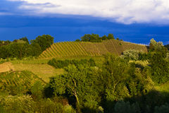 Sikt av vingårdarna och kullarna av Roero Piedmont Italien under en åskväder Royaltyfri Fotografi