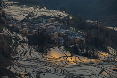 Sikt av Yuan Yang Rice terrasser Arkivfoto
