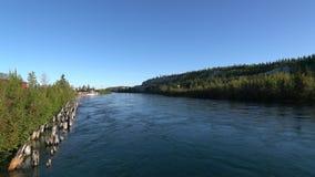Sikt av Yukon River som flödar nära det vita passerandet & Yukon järnvägstationen stock video