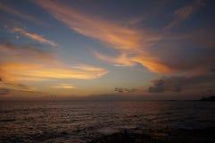 Sikt för öga för Tenerife lasAmericas 2015 fåglar Europa Royaltyfri Fotografi