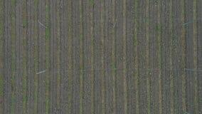 Sikt för antennöverkant ner av ett brukat flygturfält på en slovenian lantgård på en tidig höstmorgon arkivfilmer