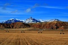 Sikt för Dubois Wyoming berglantbruk av det skördade alfalfafältet framme av den Absaroka bergskedjan Fotografering för Bildbyråer