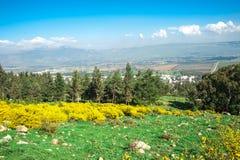 Sikt för gul gräsplan för landskap Arkivbild