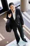 sikt för holding för vinkelportföljaffärskvinna hög Arkivfoto