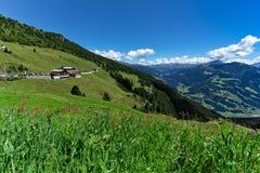 Sikt för låg vinkel av den gröna ängen och den alpina byn med höga berg under blå himmel Österrike Tirol, Zillertal, Zillertal, h royaltyfria bilder