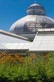 Sikt för låg vinkel av ett växthus, Allan Gardens, Toronto, Ontario, Royaltyfri Bild