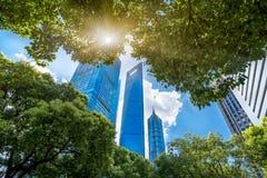 Sikt för låg vinkel av moderna kontorsbyggnader i Shanghai Arkivbilder