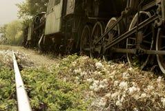 Sikt för låg vinkel av spår för ett retro drev och järnväg Royaltyfri Bild
