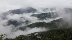 Sikt för långt område av mest cloudforest Arkivfoto