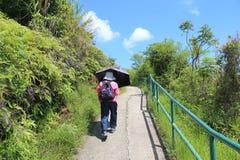 Sikt för landskap för Lamma ö i Hong Kong Fotografering för Bildbyråer