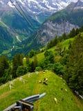 Sikt för Lauterbrunnen dallandskap från kabelbilen på den Murren byn, Lauterbrunnen, Schweiz, Europa arkivfoto