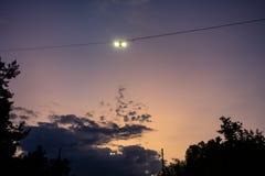 Sikt för natt för gataljus med solnedgång och violett himmel och träd royaltyfri foto