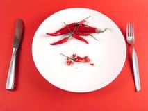 sikt för platta för chili full skivad serie royaltyfria bilder