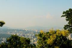Sikt för Seoul stadsgata från överkant i sommar Arkivbild