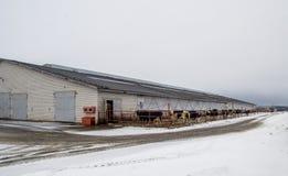 Sikt för sida för boskaplantgårdbyggnad i vinter arkivbild
