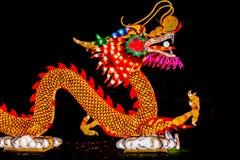 Sikt för sida för Kina ljusdrake Arkivfoton