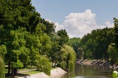 Sikt för solig dag av en flod i en parkera Royaltyfri Bild