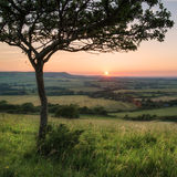 Sikt för solnedgång för landskapbildsommar över engelsk bygd Royaltyfri Fotografi
