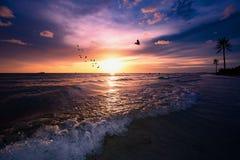 Sikt för solnedgångstrandFlorida dramatisk afton Royaltyfri Foto